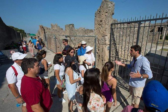 Pompeii and Herculaneum Small Group tour with an Archaeologist