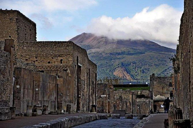 POMPEI & VESUVIO TOUR Full Day departure from NAPLES (entrance fees included)
