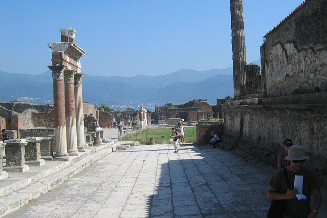 Pompeii and Herculaneum Full Day Tour from Sorrento