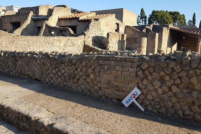 Pompeii and Herculaneum Ruins Guided Tour from Naples