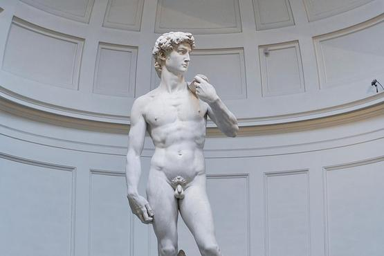 Private Accademia Gallery Guided Visit