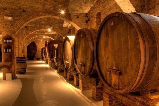 Primitivo and Negramaro Wine Tour. Departing from Lecce
