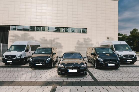 Private Arrival Transfer from Turin Airport to Turin City