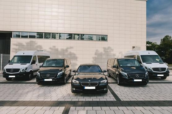 Private Arrival Transfer from Venice TSF Airport to Venice City