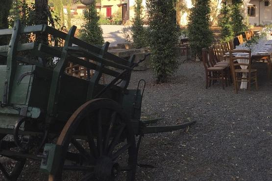 Private 3.5-Hour Castelli Romani Wine Tasting Tour from Rome